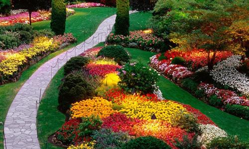 Landscape Design Aurora, CO - Arbor Tree Care